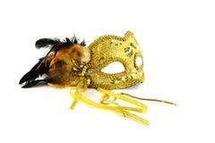 Mask. The fragile beauty Royalty Free Stock Photos