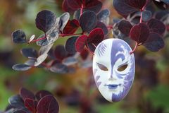 Mask on a natural background, the concept we all wear masks. Play, theater, pretense Royalty Free Stock Image