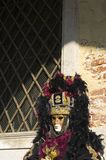 Mask with plumes. Mask of Venice carnival 2010 Royalty Free Stock Photography