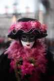 Mask Portrait Carnival Of Venice Italy Stock Photography