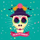 Mask of the santa death with hat and flowers stock illustration