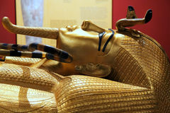 Gold pharaon Royalty Free Stock Photo