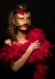 maska Fotografia Stock