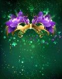 Maska na zielonym tle Zdjęcie Stock