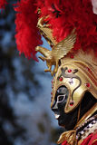 maska venetian Fotografia Royalty Free