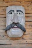 Maska z wąsy royalty ilustracja