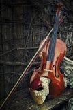 Maskarada - fantom opery maska z skrzypce Obrazy Royalty Free
