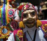 Masked Royalty Free Stock Image