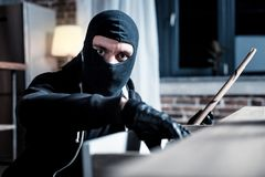 Masked burglar committing a theft. Burglar. Concentrated dark-eyed masked burglar wearing a uniform and holding a folder while looking for something in the table Stock Photography
