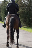 Masked french policeman riding black horse. Police on horseback. Royalty Free Stock Image
