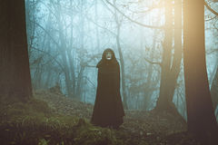 Masked mysterious person in the mist royalty free stock images
