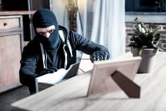 Masked thief stealing money from the table. Burglary. Determined dark-eyed masked thief wearing a uniform and holding a folder while stealing money from the Stock Photos