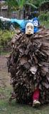 Masker de carnaval Image stock