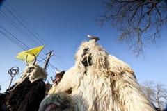 Masker de carnaval en fourrure chez le 'Busojaras', le carnaval de l'enterrement de l'hiver Image libre de droits