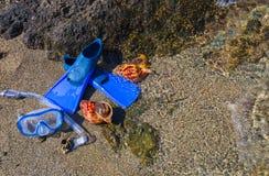 Masker met buis voor het snorkelen en vinnen en twee zeeschelpen op het overzeese strand Stock Fotografie