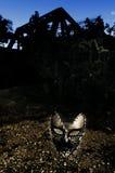 Maskerade - Geen het Schenden royalty-vrije stock foto