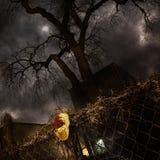 Maskerade - Geen het Schenden royalty-vrije stock fotografie