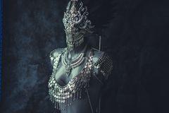 Maskerade, met de hand gemaakt stuk, zilveren juwelenkostuum met kettingen a royalty-vrije stock afbeeldingen