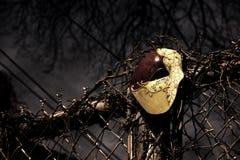 Maskerade - Spoor van het Masker van de Opera stock foto's