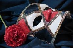maskering Royaltyfria Foton
