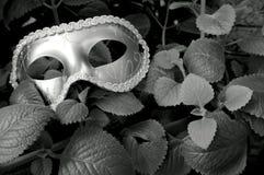 maskering royaltyfri fotografi