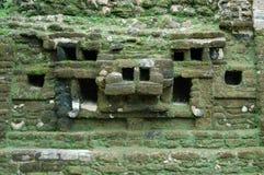 Maskering av den Jaguar templet Belize Royaltyfria Foton