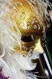 Maskering för vita fjädrar, Venedig, Italien, Europa arkivfoton