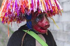 Maskering med hornet och hatten på det Aliano landskapet av Matera Fotografering för Bildbyråer