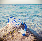 Maskerings- och snorkeldykning på Pebblet Beach Royaltyfri Fotografi