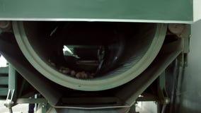 Maskin för att gradera av kottar Utrustning för att bearbeta kottar av barrträd lager videofilmer