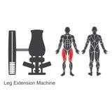 Maskin för idrottshallbenförlängning royaltyfri illustrationer