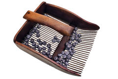 Maskin till mot efterkrav blåbär Royaltyfria Bilder