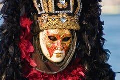 maskowy mężczyzna portret s Zdjęcie Royalty Free