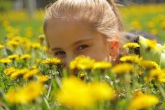 maskrosflicka Royaltyfri Fotografi