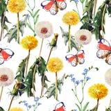 Maskrosor äng blommar, fjärilen, vattenfärg, mönstrar sömlöst Royaltyfri Fotografi