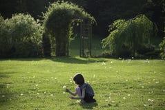 Maskrosor för en ung flickaplockning i en solig trädgård Royaltyfri Fotografi