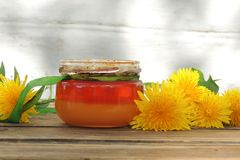 Maskrosor och honung royaltyfri foto