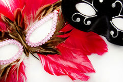 Masks isolated Royalty Free Stock Images