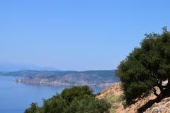 Maslini pe coasta Zdjęcie Stock