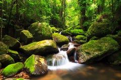 Masoala cascade Stock Photos