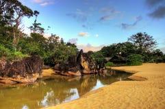 Masoala jungle beach Stock Image