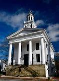 Mason County Courthouse #2 arkivfoto