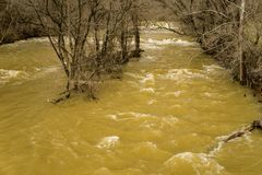 Mason Creek al livello di piena immagini stock libere da diritti