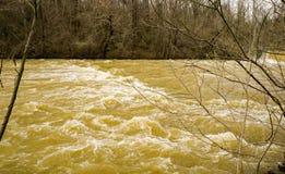 Mason Creek na fase da inundação imagens de stock royalty free