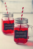 Mason Jar-de dranken van de limonadepartij Stock Foto