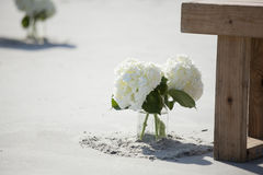 Mason jar with flowers for beach wedding Royalty Free Stock Image