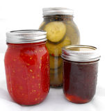 Mason Jars of Canned Foods. Fresh organic canned, preserved foods from the garden.  Red tomato sauce, pickle cucumbers, and grape jam. Glass mason jars with Stock Images