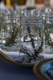 Mason Jars with Fresh Thyme Royalty Free Stock Photography