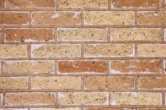 Masonry made of brown brick with white efflorescence. Brick wall from brown clay brick with white efflorescence, texture for background Stock Photo