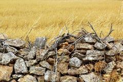 Masonry stone wall golden summer field Royalty Free Stock Photos